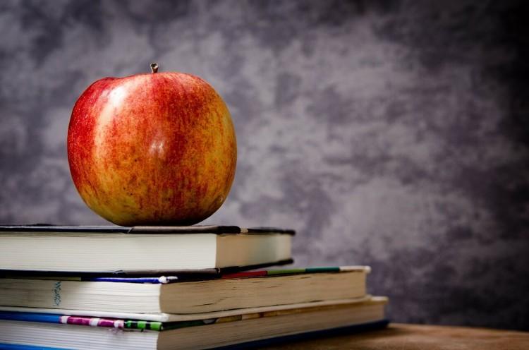 職業訓練の机とリンゴ