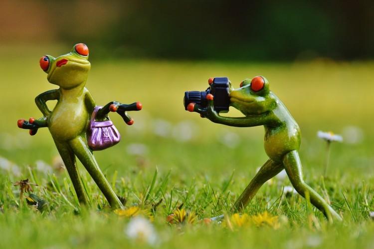 写真スタジオで撮影する